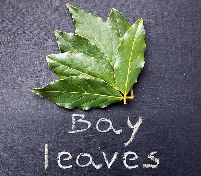 Bay Leaf Nutrition Facts Health Benefits Nutritional Value Calories